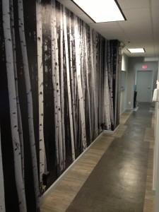 Office Hallway 3